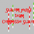 Commissie Slalom Support Jeugd in 2017